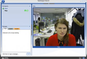 Online Meeting screen sharing