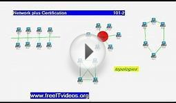 free it videos certification 101 2