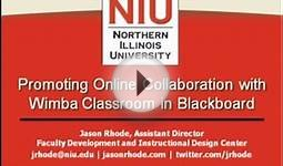 Promoting Online Collaboration with Wimba Classroom in